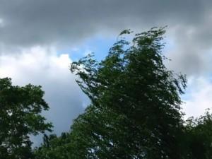 Сегодня ожидается усиление ветра.
