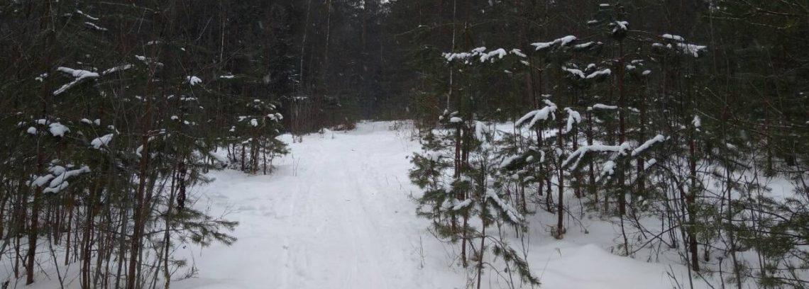 Лыжная трасса не для езды на автомобилях и мотоциклах