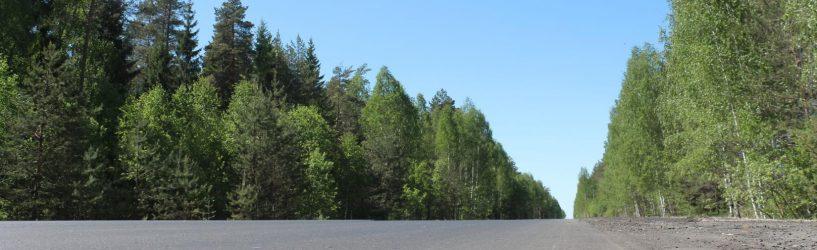 Новый асфальт на автодороге Южа-Палех