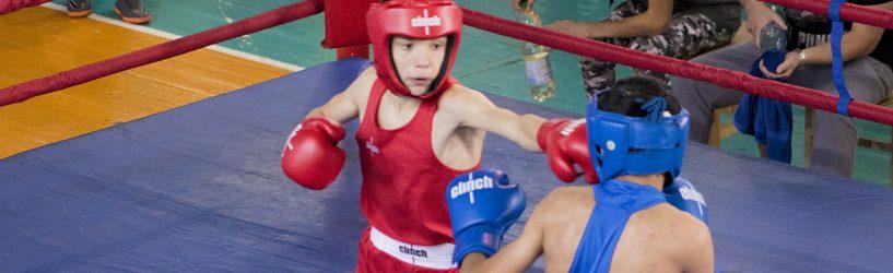 Четверо южан стали победителями юношеского турнира по боксу (РЕЗУЛЬТАТЫ)