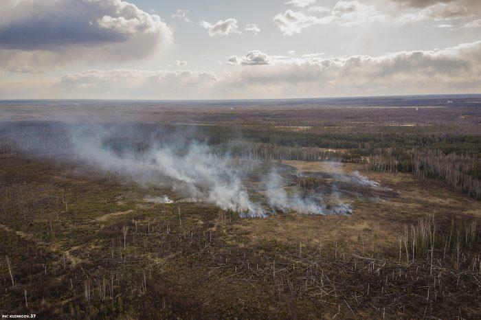 Очередной лесной пожар зарегистрирован в Южском районе